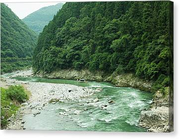 Lush Green Volcanic River Gorge, Kyoto, Japan Canvas Print by Ippei Naoi