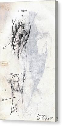 Lxxxv Canvas Print by Duwayne Washington