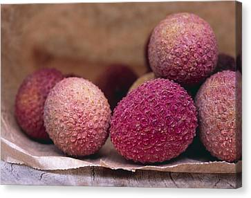Lychee Fruit Canvas Print by Maxine Adcock