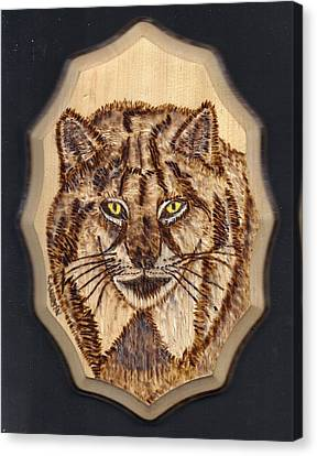 Lynx Canvas Print by Clarence Butch Martin