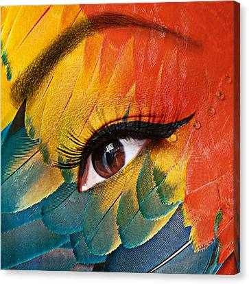 Macaw Canvas Print by Yosi Cupano