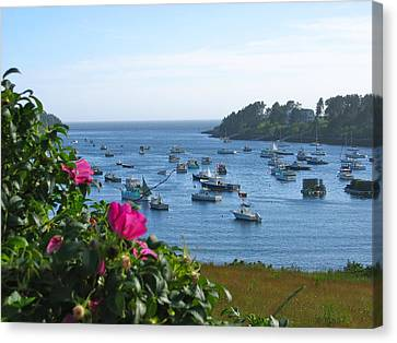 Mackerel Cove I Canvas Print by Mary McAvoy