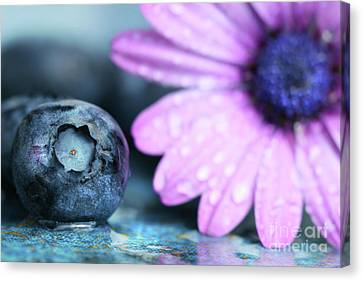Macro Shot Of A Blueberry Canvas Print by Sandra Cunningham