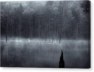 Canvas Print featuring the photograph Madame Sherri's Pond II by Tom Singleton