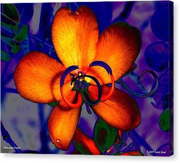 Madarin Petals Canvas Print