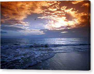 Madeira Fire Sky Canvas Print by David Yunker