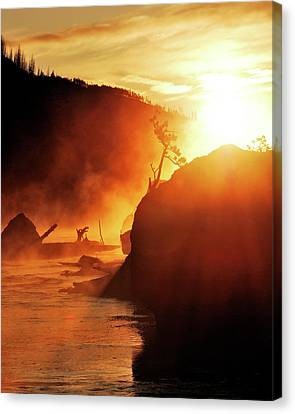 Madison River At Sunrise Canvas Print by by Adam Christensen