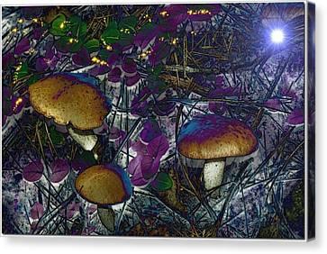 Magic Mushrooms Canvas Print by Barbara S Nickerson