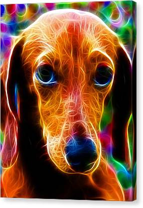 Magical Dachshund Canvas Print by Paul Van Scott