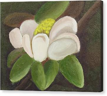 Canvas Print featuring the painting Magnificient Magnolia by Margaret Harmon