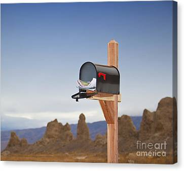 Mailbox In Desert Canvas Print by David Buffington