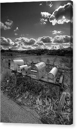 Mailboxes - Black  And White Canvas Print by Peter Tellone