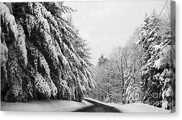 Maine Winter Backroad Canvas Print by Christy Bruna