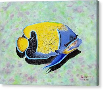 Majestic Angelfish Canvas Print by Riley Geddings