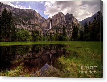 Majestic Reflections Canvas Print
