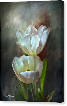 Majestic Tulips Canvas Print by Bonnie Willis