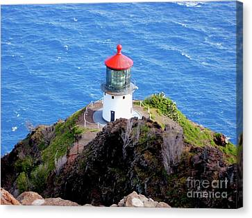 Makapupu Lighthouse Canvas Print by Iliana Finney
