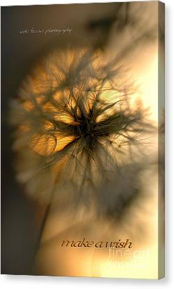 Canvas Print featuring the photograph Make A Wish by Vicki Ferrari