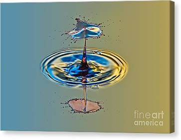 Making A Splash Canvas Print by Susan Candelario