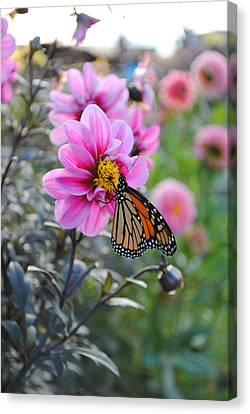 Canvas Print featuring the photograph Making Things New by Michael Frank Jr