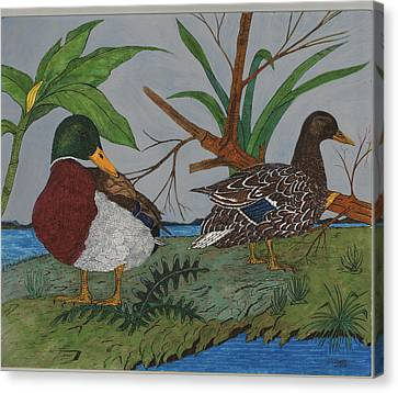 Mallards Canvas Print by Tommy Combs