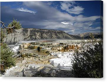 Canvas Print featuring the photograph Mammoth Hot Springs by Geraldine Alexander