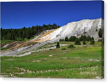 Mammoth Hot Springs Lower Terrace Canvas Print by Louise Heusinkveld