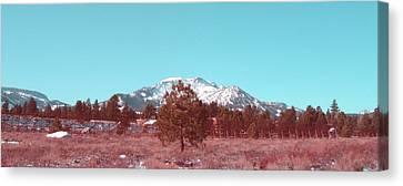 Mammoth Mountain Canvas Print