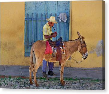 Canvas Print featuring the photograph Man And A Donkey by Lynn Bolt