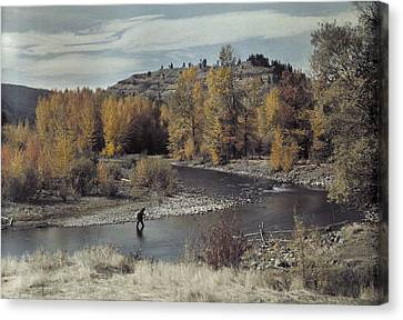 Man Fishes For Trout In The Naches Canvas Print by Clifton R Adams