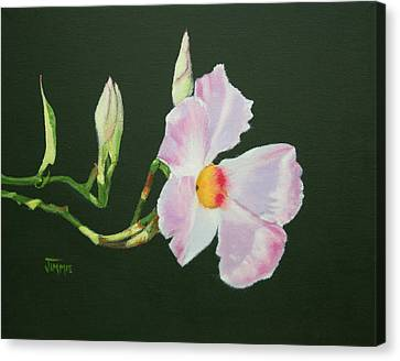 Canvas Print featuring the painting Mandevilla Reaching Out by Jimmie Bartlett