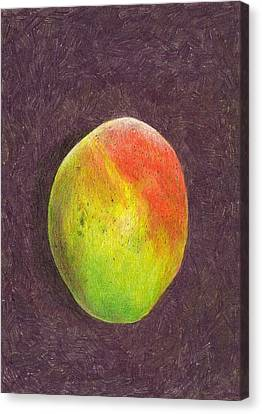 Mango On Plum Canvas Print by Steve Asbell
