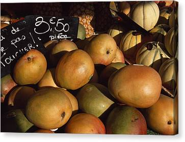 Mangoes And Melons Priced In Euros Canvas Print by David Evans