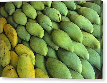 Mangoes Sold At A Market Canvas Print by Todd Gipstein
