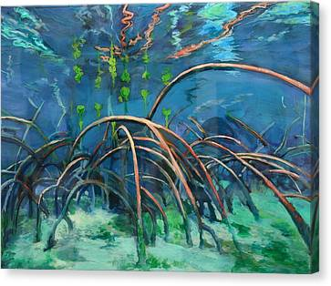 Mangrove Roots  Canvas Print by Scout Cuomo