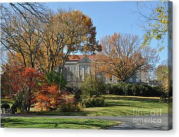 Mansion In The Woods Canvas Print by Denise Ellis