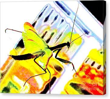 Mantis Canvas Print by Xn Tyler