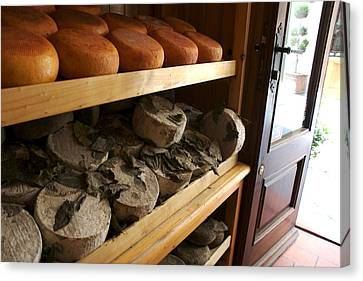 Many Varieties Of Pecorino Cheese Line Canvas Print by Heather Perry
