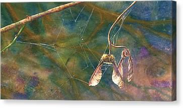 Maple Magic Canvas Print by Melinda Wilde