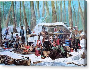 Maple Sugaring, 1872 Canvas Print by Photo Researchers