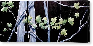 Maples In Moonlight Canvas Print by Diane Daigle