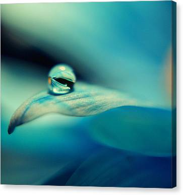 Marble Blue Canvas Print by Wendy Riley- Athans