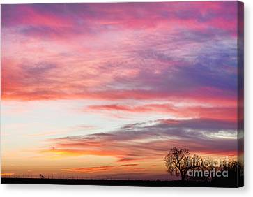 March Countryside Sunrise  Canvas Print by James BO  Insogna