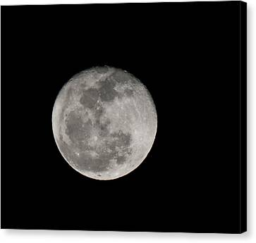 March Waning Moon Canvas Print by Lara Ellis