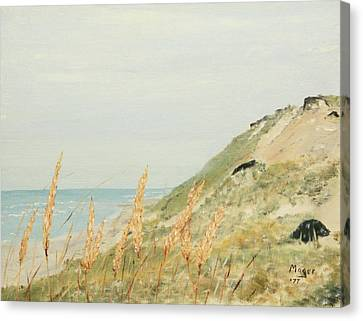 Marconi Beach Canvas Print by Alan Mager