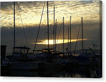 Canvas Print featuring the photograph Marina by Jerry Cahill