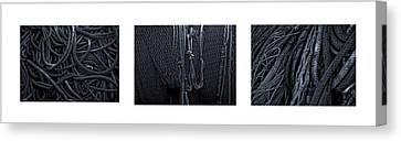 Marine Triptych Canvas Print by Gary LaComa
