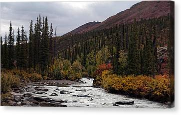 Marion Creek Canvas Print by Gary Rose