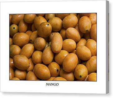 Market Mangoes Against White Background Canvas Print by Zoe Ferrie
