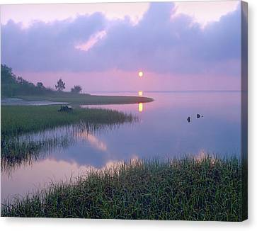 Marsh At Sunrise Over Eagle Bay St Canvas Print by Tim Fitzharris